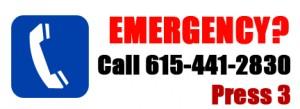 emergency copy